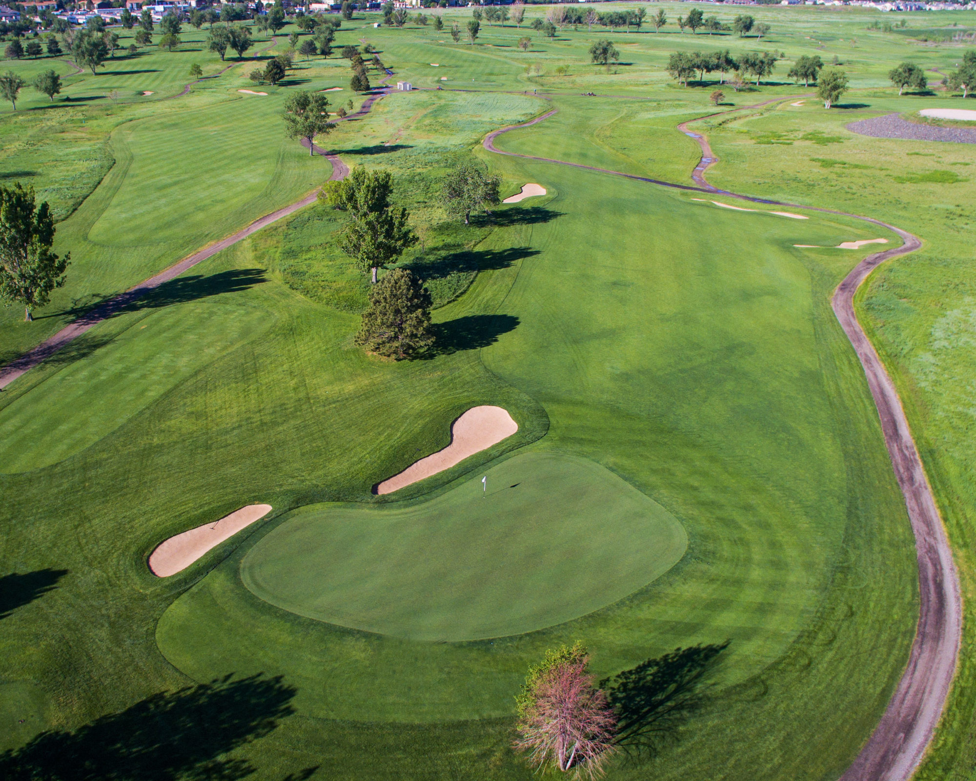 golf course designers
